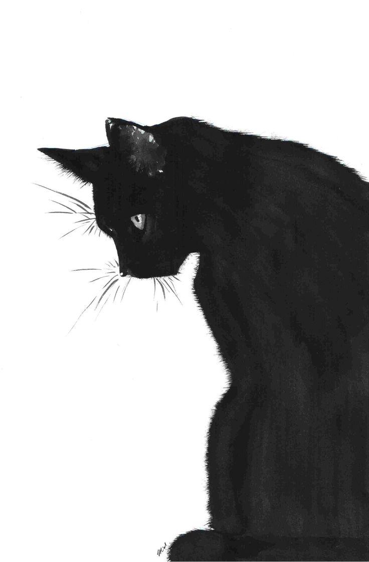 Drawn photos black and white Drawing com cat pinimg ec0