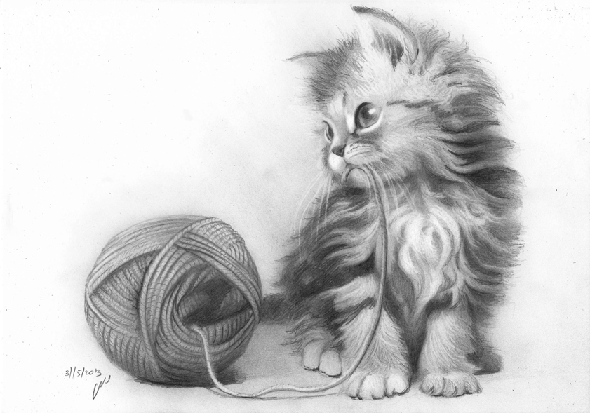 Drawn kitten Pencil Drawing Art Realistic Drawing