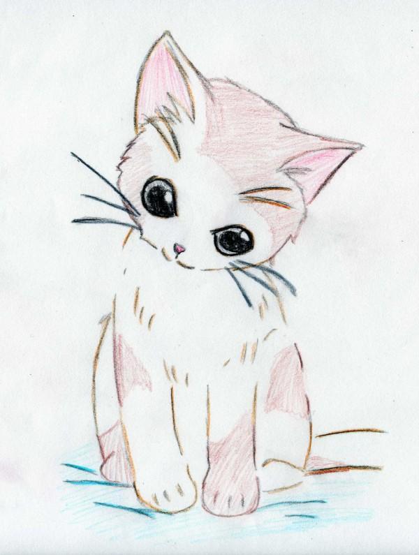 Drawn kitten anime #catfact Anime Mercuryh Kitten #cutekitten