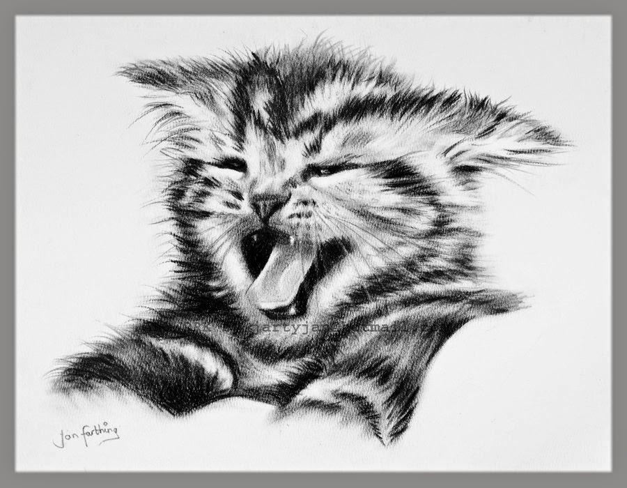 Drawn santa kitten Drawings kitten Drawing Cartoon Anime