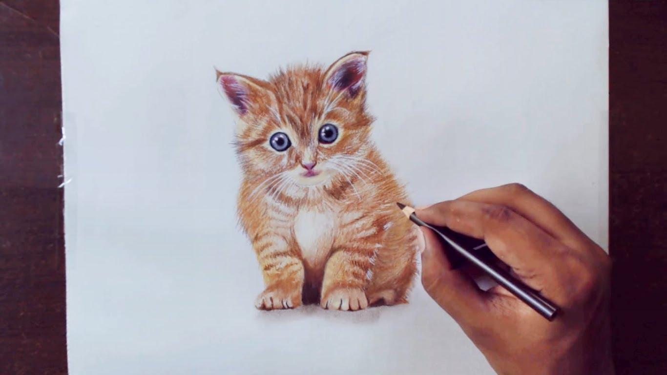 Drawn animal kitten #7