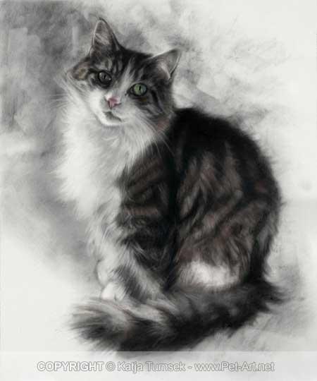 Drawn scenic portrait Katja by cat Pet Pastel