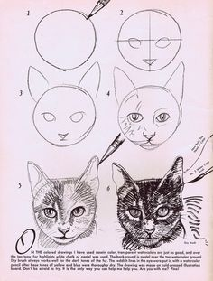 Drawn cat step by step #2