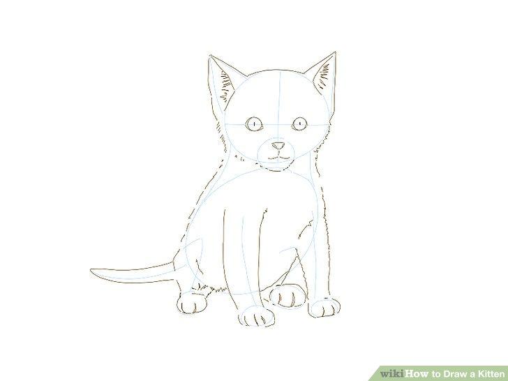 Drawn kittens 7 Step Draw Kitten Kitten