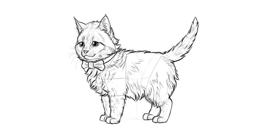 Drawn kitten cute pet How How Kitten a Cute