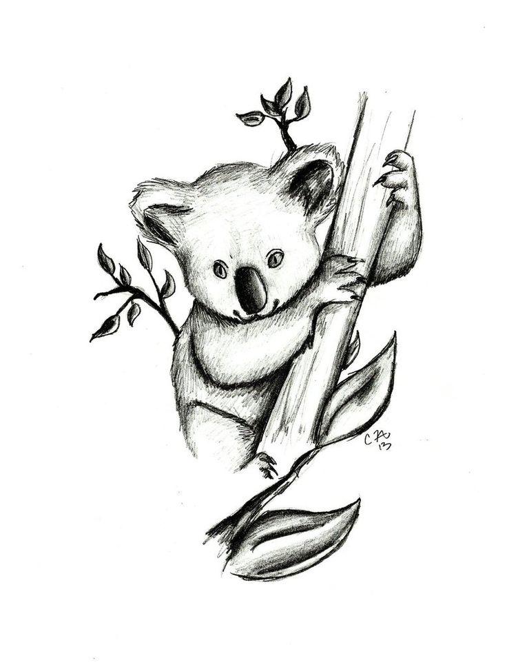 Drawn koala Ideas animals drawing Koala koala
