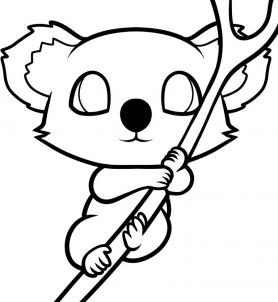 Drawn koala Are in is this Here