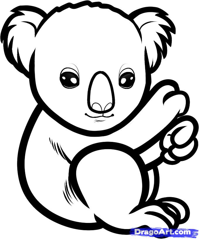 Drawn koala 6 a to Baby how