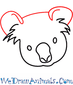 Drawn koala endangered animal #8