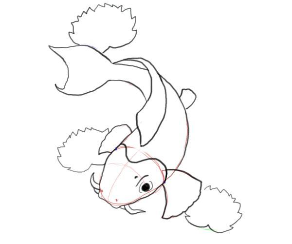 Drawn koi carp #9