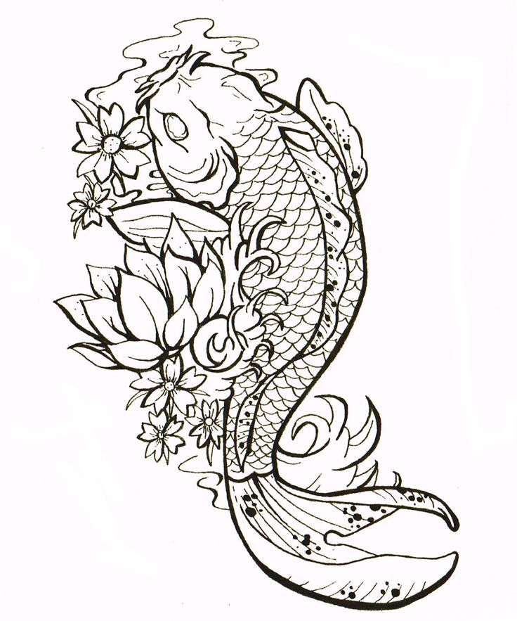 Drawn koi Search ideas fish 25+ fish