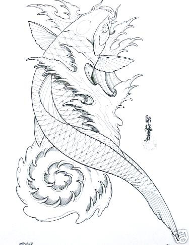 Drawn koi fish Fish try to you show
