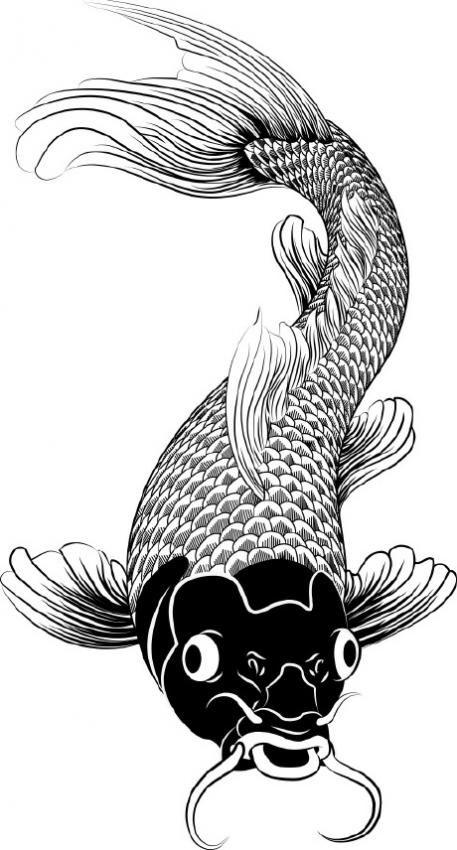 Drawn painting fish Koi Pinterest Fish Wealth drawing