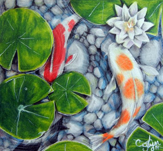 Drawn pond fish pond Colored Artwork Koi Colored Koi