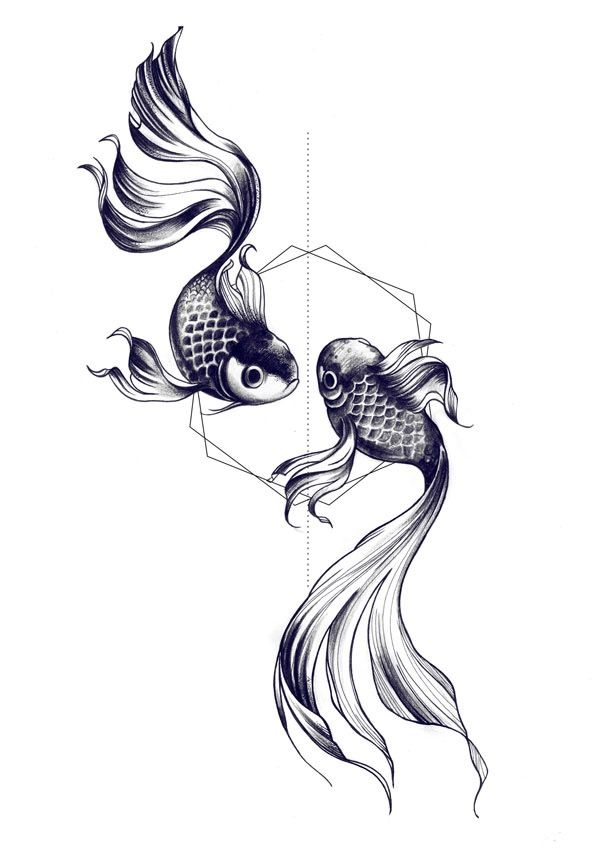 Drawn koi fish Ideas fish drawing tattoo The