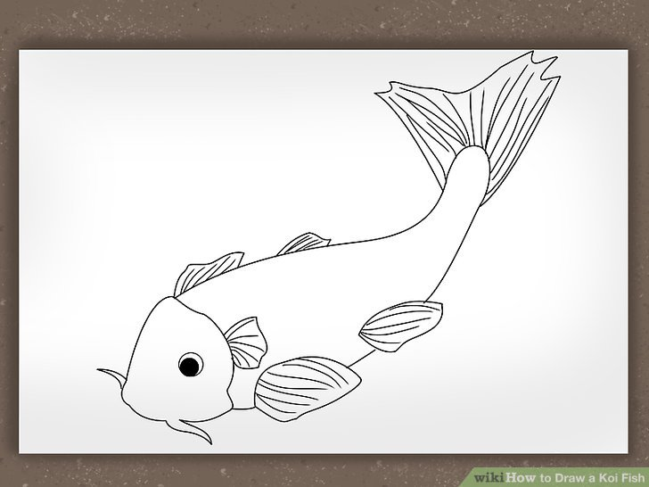 Drawn koi fish Koi titled Draw Pictures) a