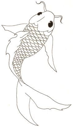 Drawn koi fish  Fish una Fish agencia