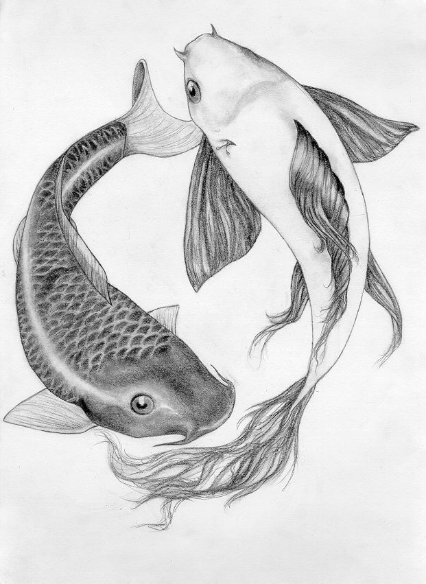 Drawn koi DrawingFish ideas http://fc03 25+ fish