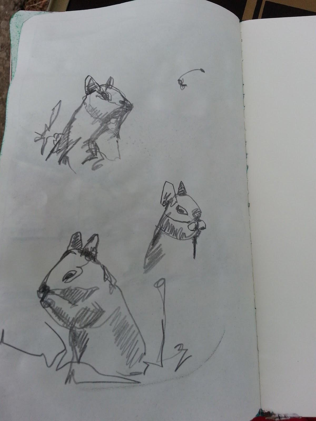 Drawn kopel boyfriend Squirrels Sketchers Diego: Velarde Lydia