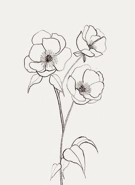 Drawn kopel boyfriend Flower Pinterest about I best