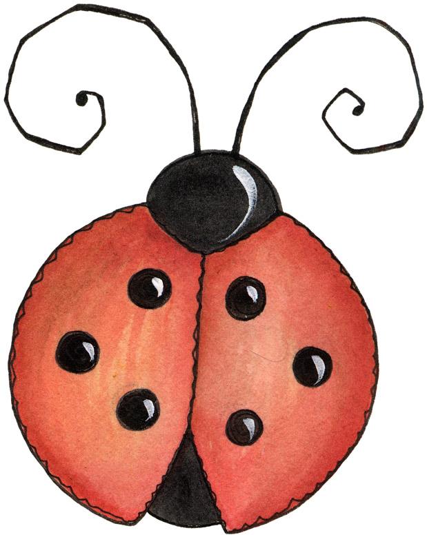 Drawn lady beetle Ladybug – Bug Dintino Susan
