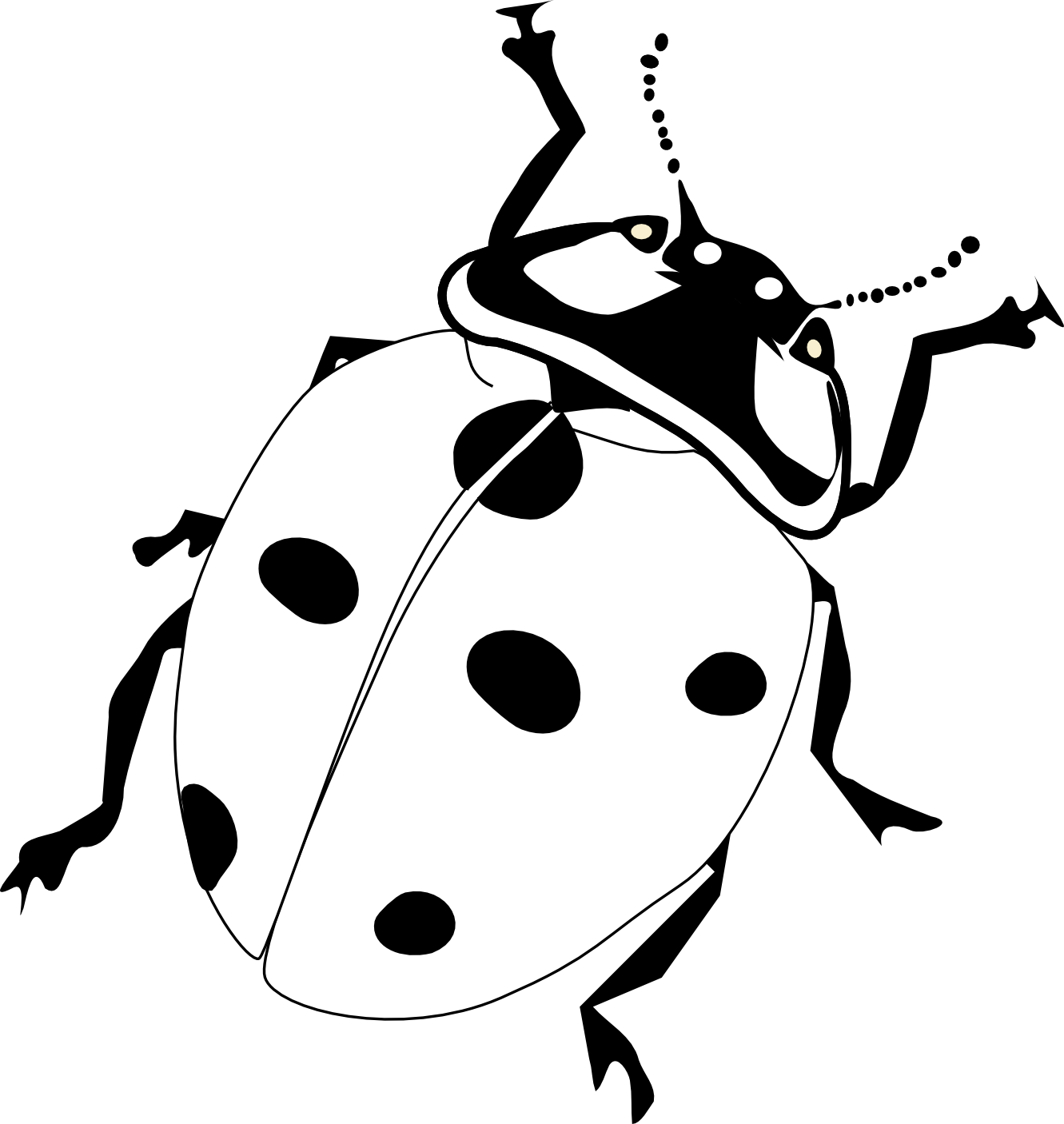 Lady Beetle clipart black and white Google ladybird realistic drawing realistic