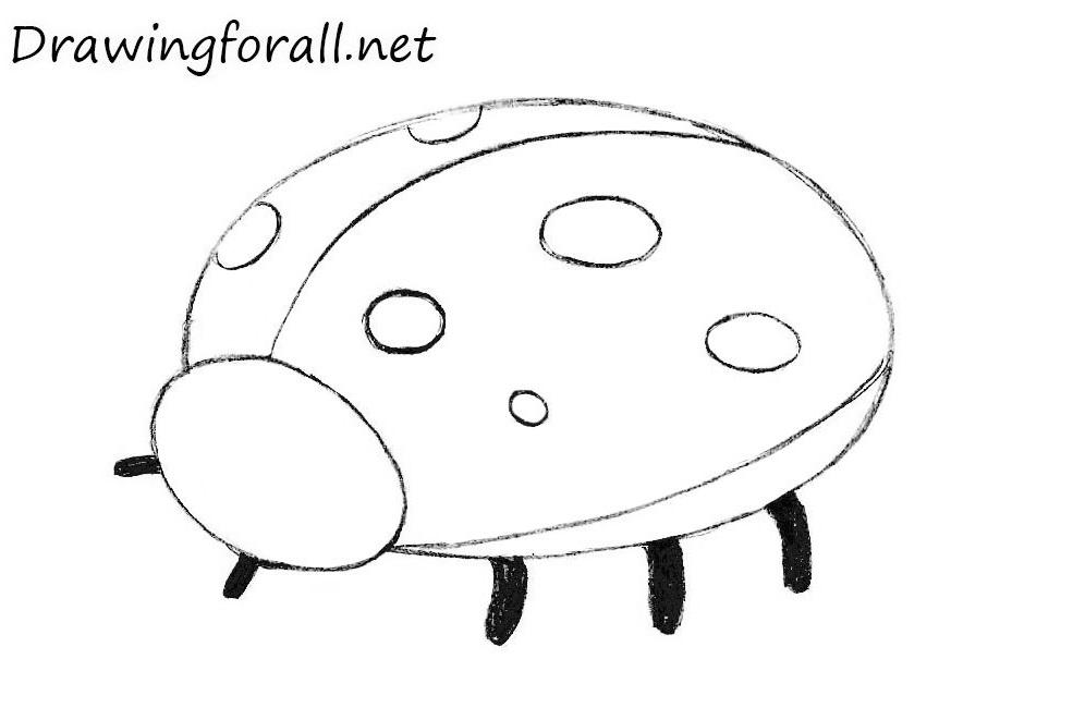 Drawn ladybug To Draw How for DrawingForAll