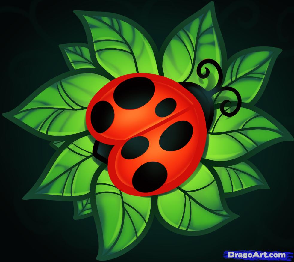 Drawn ladybug Bugs to How Step lady