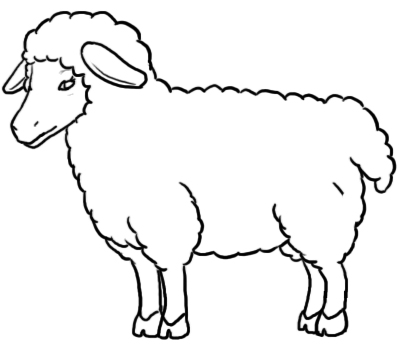 Drawn lamb #10