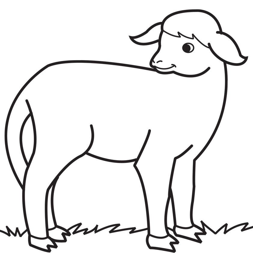 Drawn sheep coloring Free cute Clip Colouring Clip
