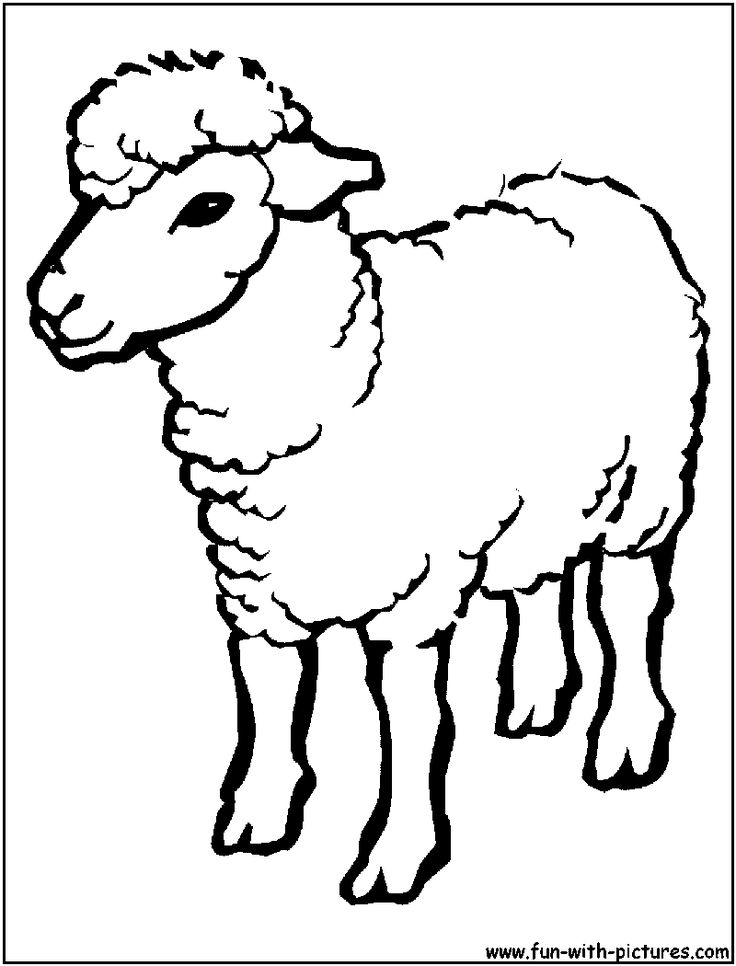 Sheep clipart easy #14
