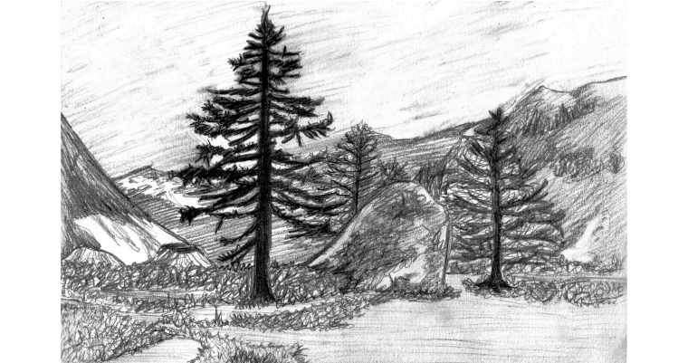 Drawn landscape easy Socks Art Joey and Project