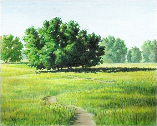 Drawn scenic color In Landscape Original Sentinel Pencil