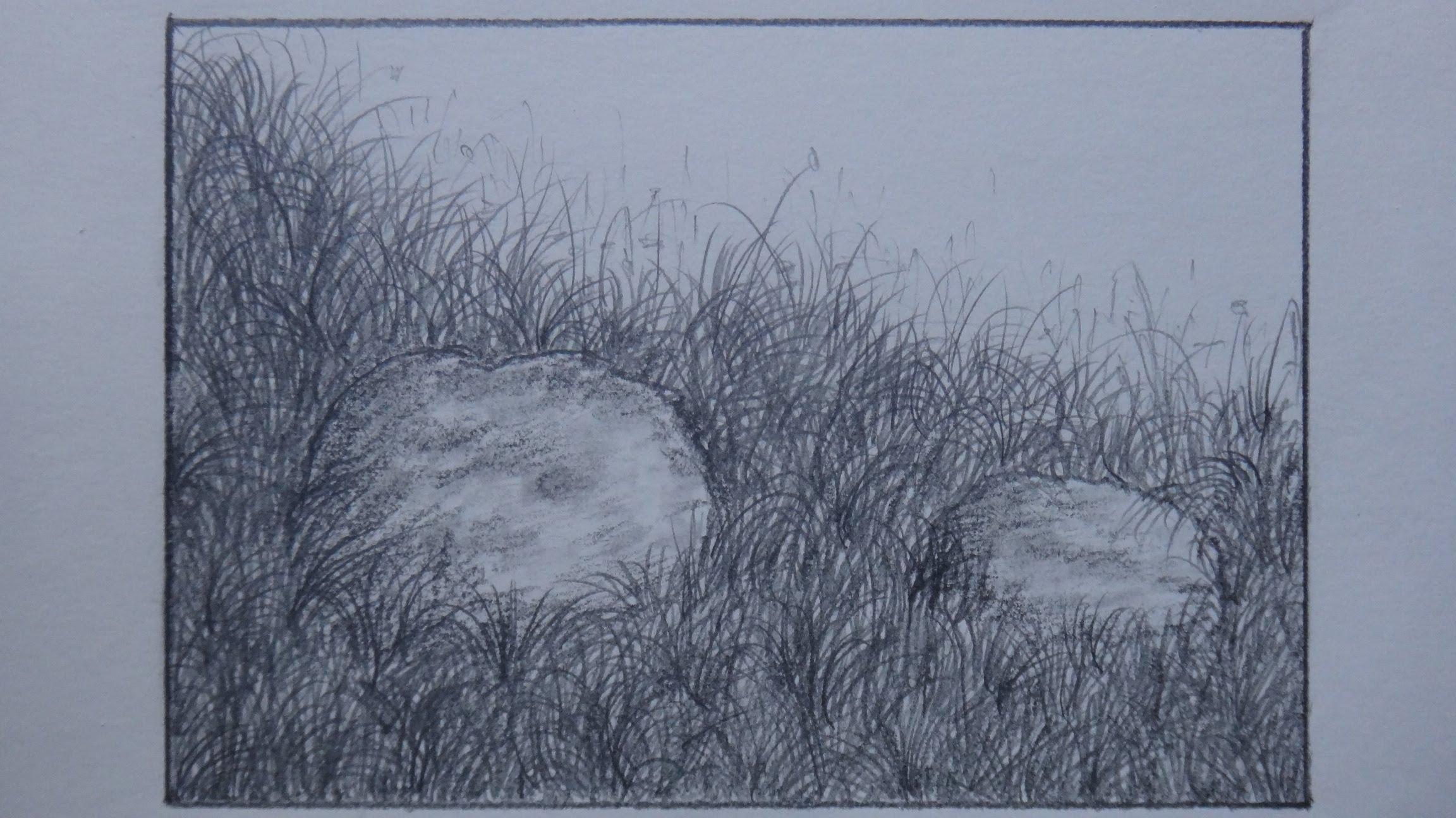 Drawn lawn Using  to draw grass