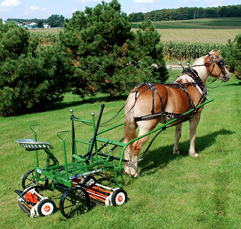 Drawn lawn Tractor Gang Mowers Tractor Horse