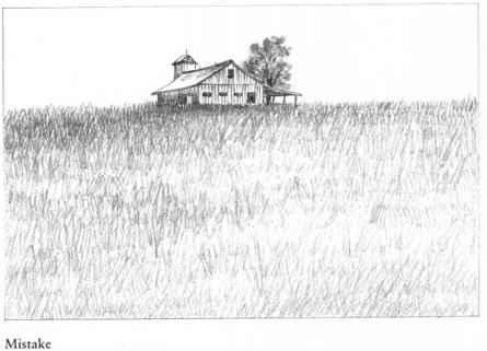 Drawn lawn Grass Barn Fields Nava Drawing