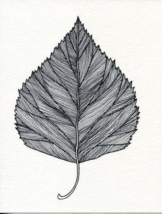 Drawn leaf Original Zentangle pen Print Birch