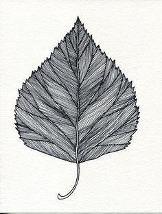 Drawn leaf #5