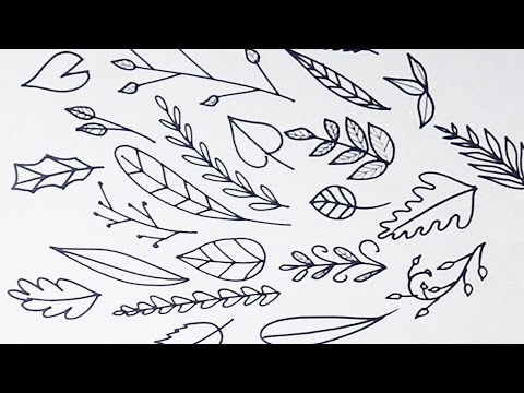 Drawn leaves vine leaf Draw and Leaves and Simple