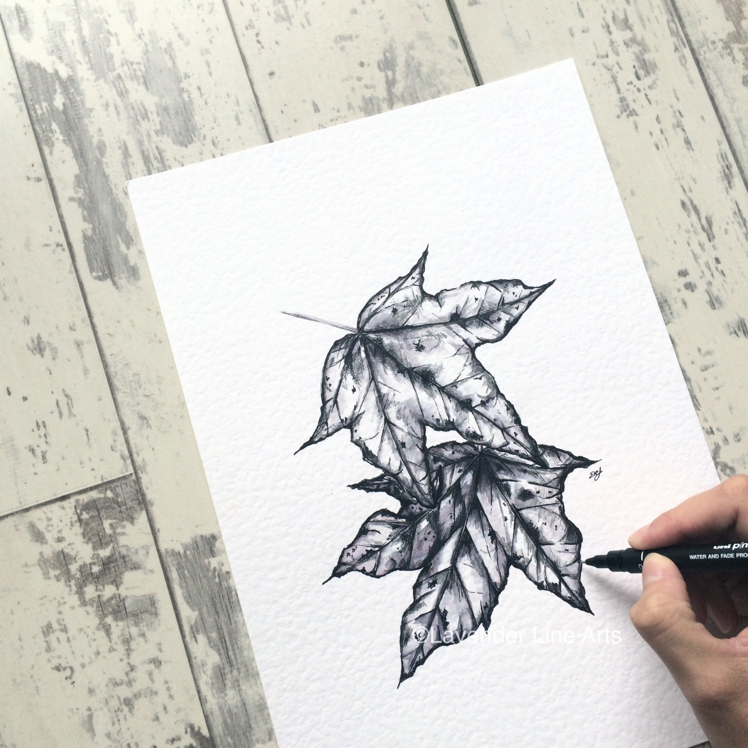 Drawn leaf Original Artwork item? Like Autumn