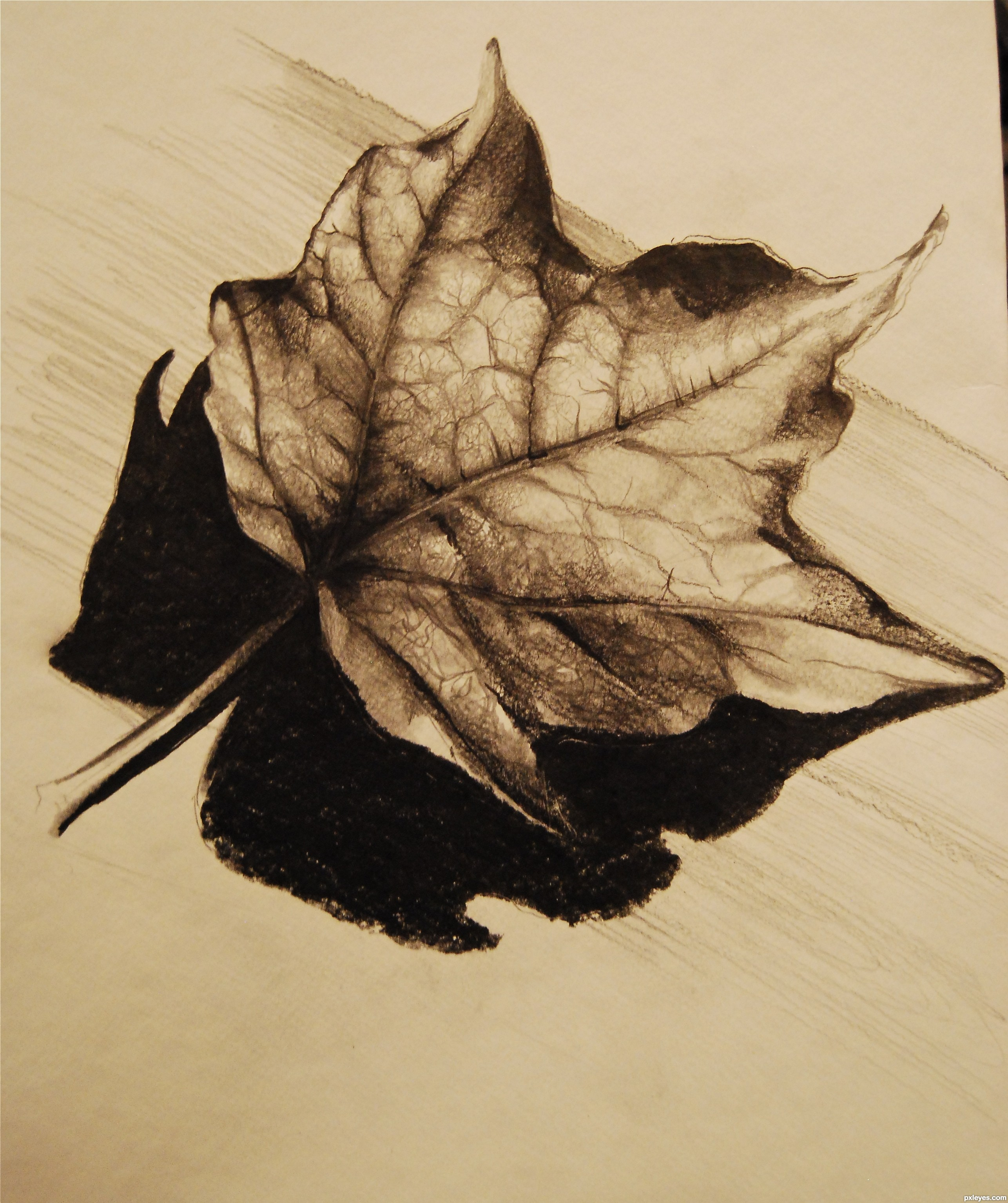 Drawn leaves shaded leaf Created com Pxleyes 1 It