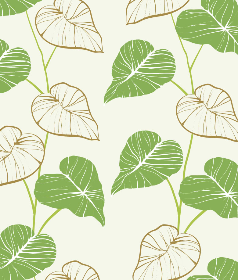 Drawn leaves detailed Drawn Drawn Vector Background Download