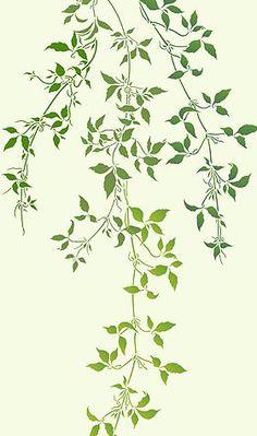 Drawn leaves vine leaf Vines Clematis flowers Google and