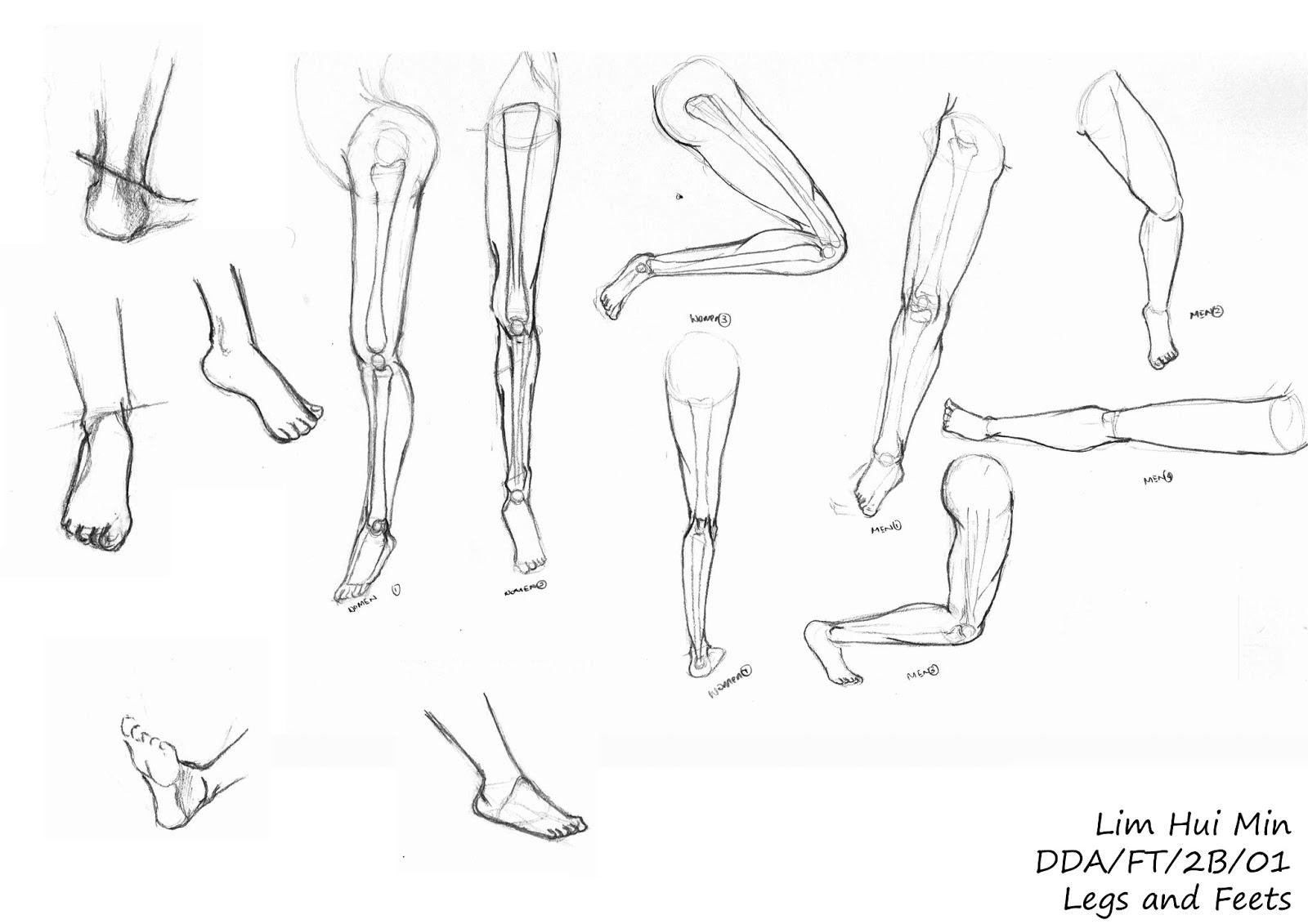 Drawn legs And Feet Lim Feet Min
