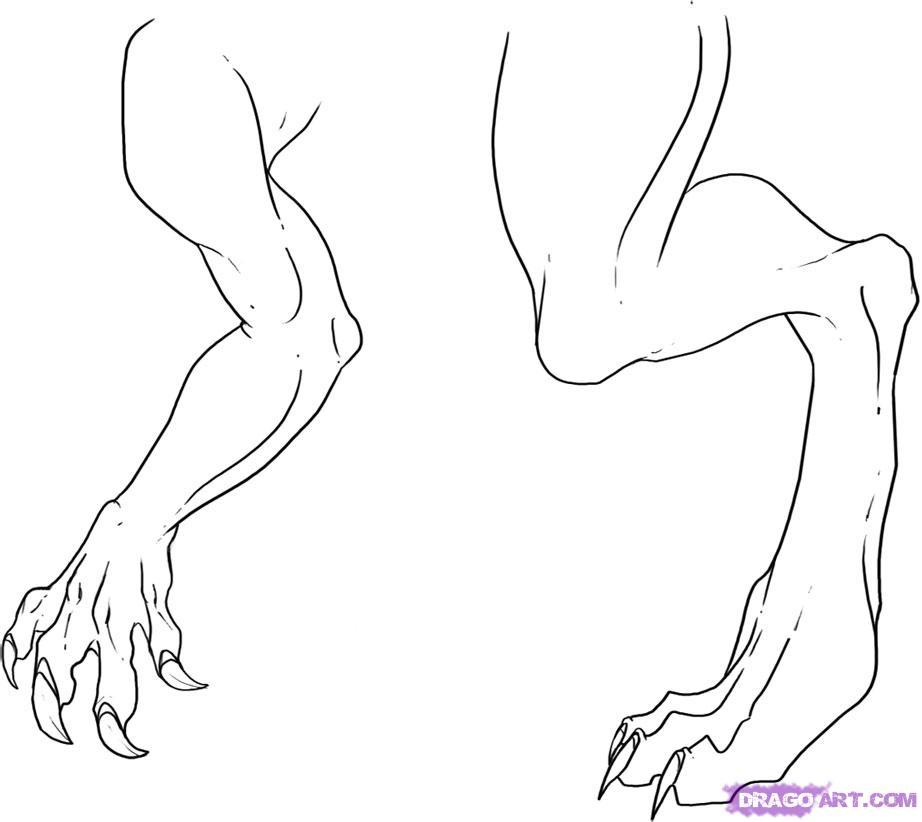 Drawn legs Draw by Step Dragon arms