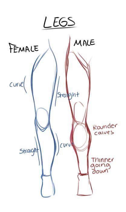 Drawn legs Leg images vs male on