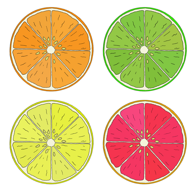 Drawn lemon single Item? of lemon Print fruits
