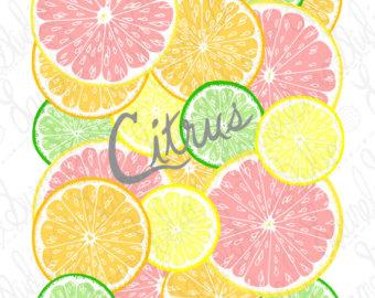 Drawn lemon single Lemon Art Food Kitchen mixed
