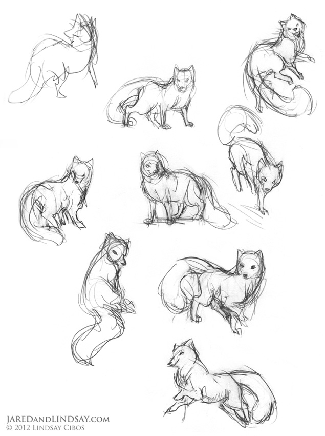 Drawn polar  bear tiny Draw The poses Bears Bears