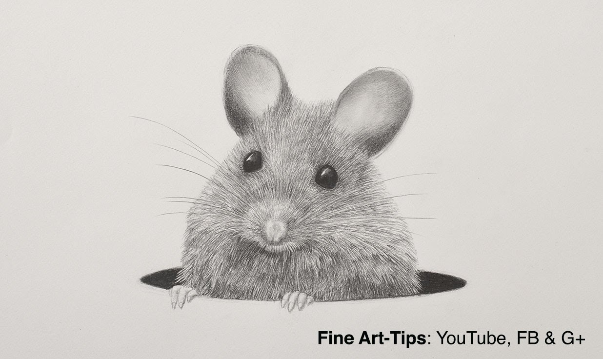 Drawn rodent pencil drawing Mouse With Mechanical to a